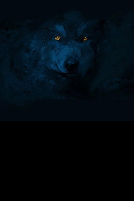 The Wolf un film de Théodore Ushev